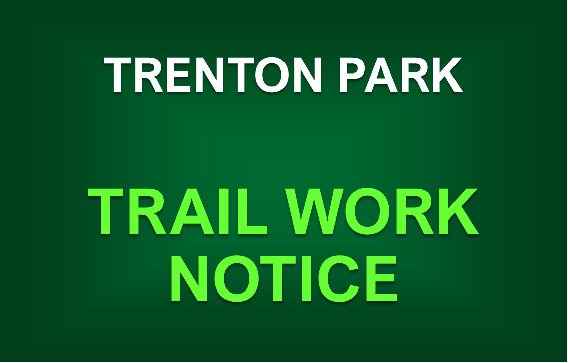 Mountain Biking Trail Work Approved for Trenton Park
